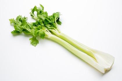 季節の食材 セロリ|おいしい簡単レシピをご紹介