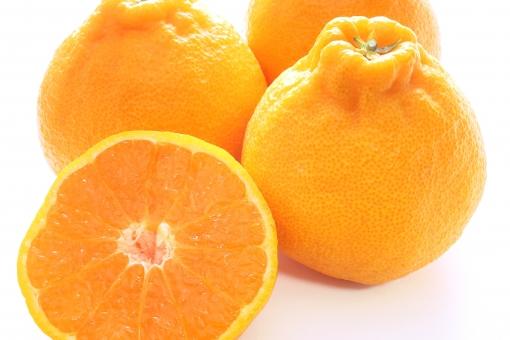 ミカンの1.6倍のビタミンCを含むデコポンのアレンジレシピ