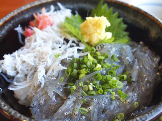 春の魚しらす|美味しい簡単レシピをご紹介