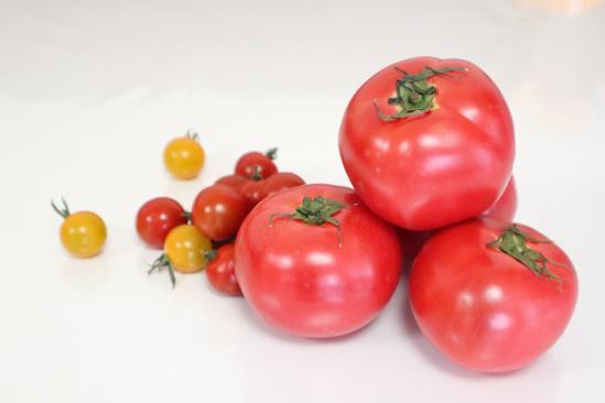 トマトで日焼けのメンテナンス|おいしいレシピをご紹介