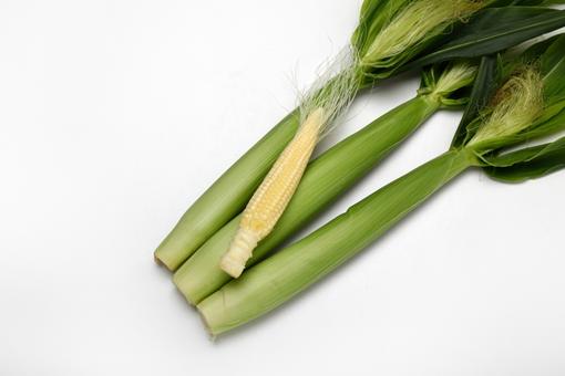 今が旬!ヤングコーンの美味しい食べ方と栄養について紹介