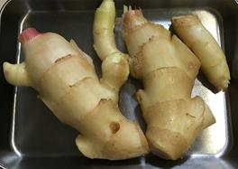 新生姜|初夏が旬の野菜