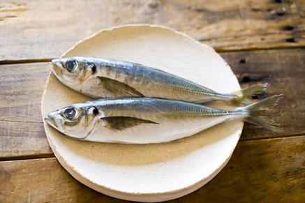栄養満点!初夏が旬の魚『アジ』の美味しいレシピ