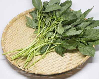 王様の野菜モロヘイヤの栄養とおすすめの簡単レシピ