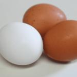筋肉強化で老化防止 代謝を上げる卵