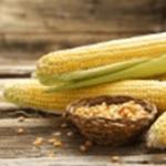 とうもろこしの栄養と簡単レシピ|夏の体力維持に効果的