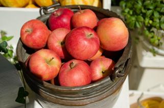 美味しいりんごの見分け方と保存方法