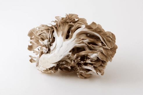 低カロリーな舞茸レシピ|秋が旬で香り豊か