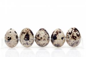 うずら卵の栄養を上手にとるコツ