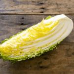 冬野菜「白菜」は栄養が豊富!風邪予防にも効果的