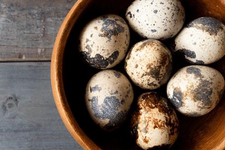 うずらの卵で貧血予防!小さくても栄養満点 うずら卵
