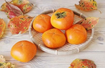 干し柿で便秘解消!二日酔い防止や美肌効果も!柿の栄養