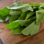 貧血予防や美肌効果も期待できる!ほうれん草の栄養とレシピ