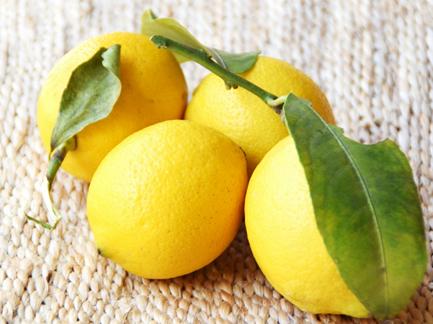 レモンとは