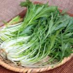 水菜は意外と栄養満点?