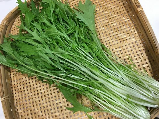 京野菜 水菜の栄養