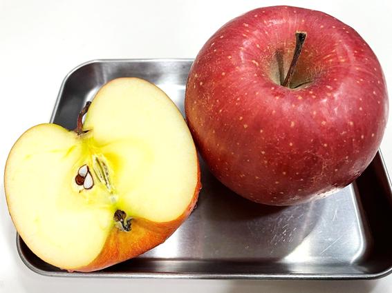 1日1個で医者いらず りんご
