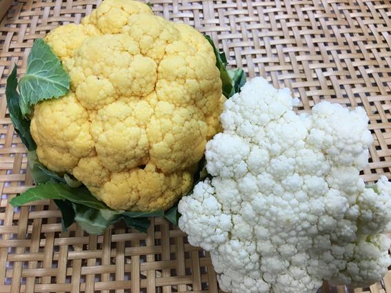 ブーケのような野菜 カリフラワーの栄養