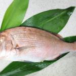 タイの栄養 体力回復・肥満予防の味方