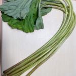 春の山菜 ふきの栄養