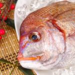 鯛の栄養について|お祝いの席にも欠かせない!