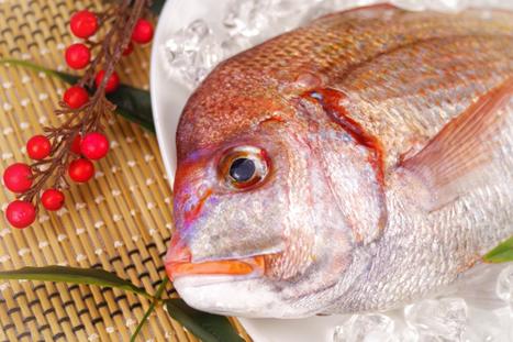 お祝いの席にも欠かせない!鯛の栄養について