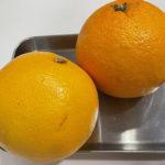 香りとほろ苦さが大人の柑橘 グレープフルーツ