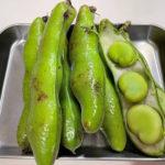 ほっくりおいしい そら豆の栄養