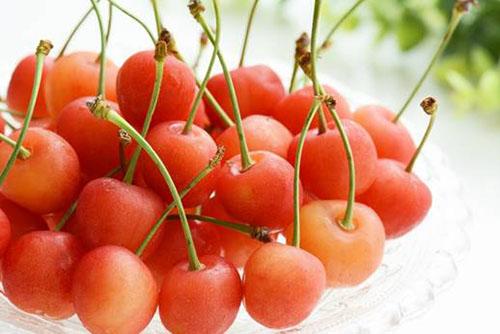 さくらんぼの栄養価と効能